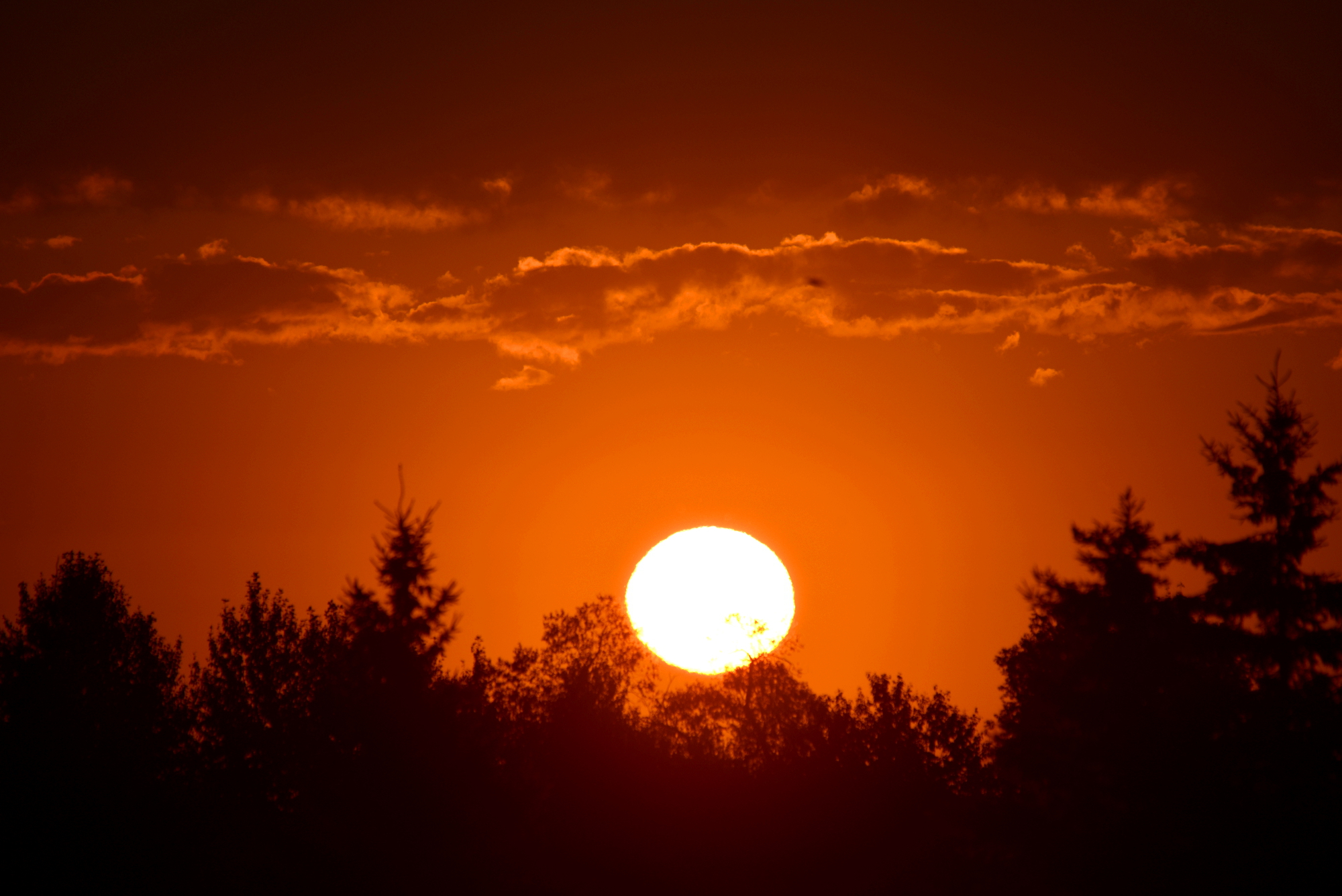 Minnesota Sunrise 2014